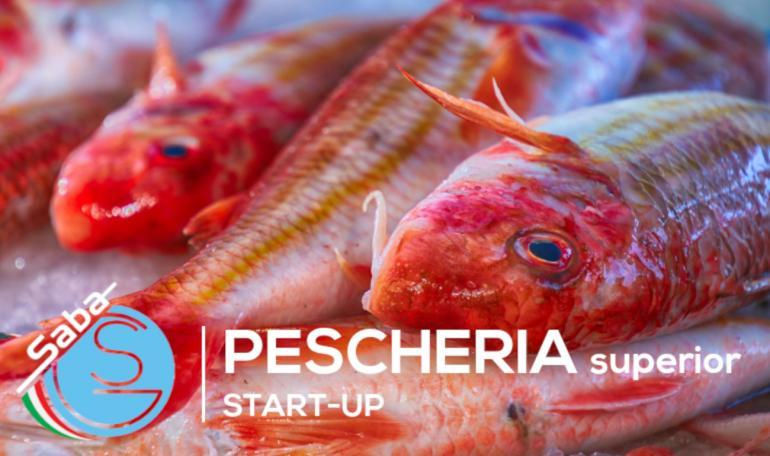 KIT PESCHERIA SUPERIOR